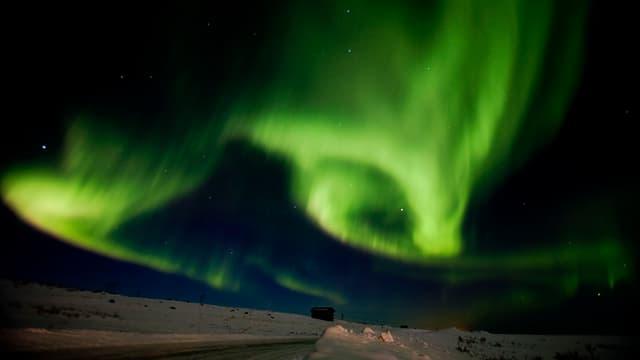 Grünes Polarlicht über der Finnmark.