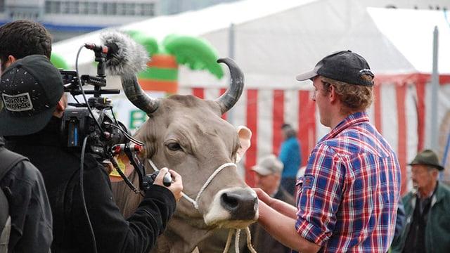 Ein Kameramann filmt einen Mann, der eine Kuh an einem Seil führt.