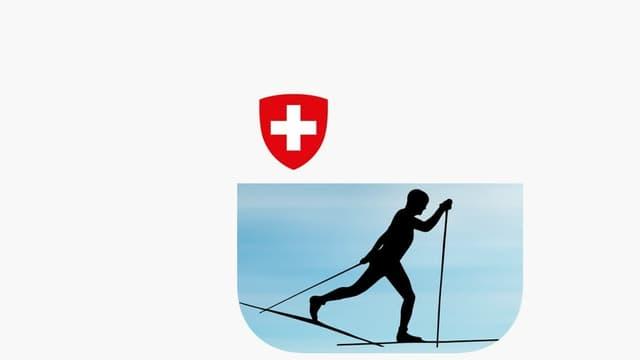 «Skilanglauf-Technik» App Icon