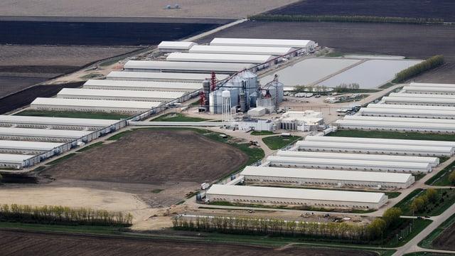 Eierfarm im US-Bundesstaat Iowa von oben