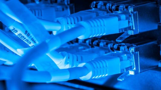 mehrere Kabel in blauem Licht