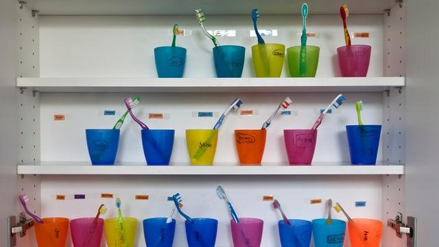 Ein Gestell mit bunten Bechern angeschrieben mit den Namen von Kindern, darin je eine Zahnbürste