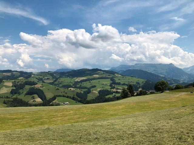 Landschaftsbild mit Hügel im Emmental.