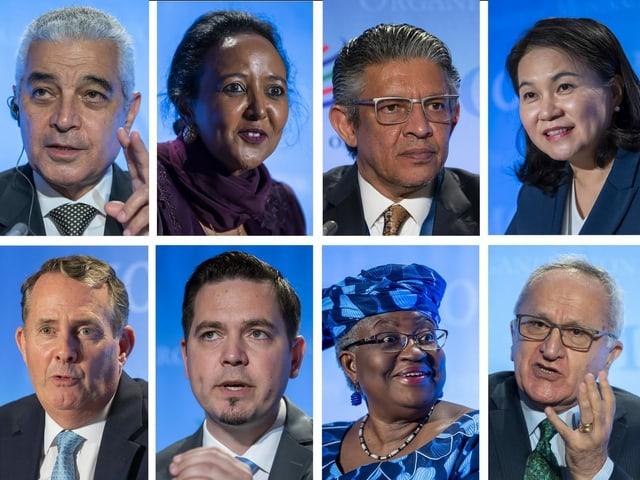 Alle acht Kandidaten auf einem Bild.
