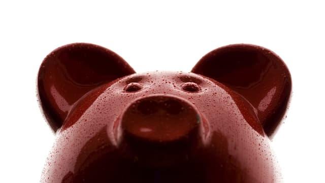 Ein rosarotes Sparschwein