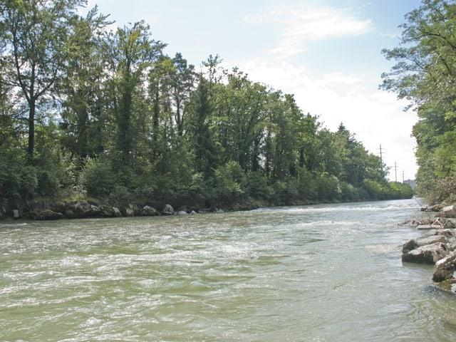 Flusslauf der Emme, der Fluss füllt das Flussbett komplett aus.