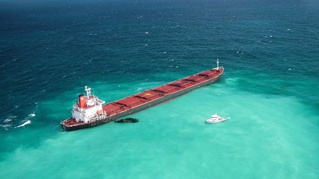 2010 verursacht ein chinesischer Frachter eine Ölpest am Great Barrier Reef.