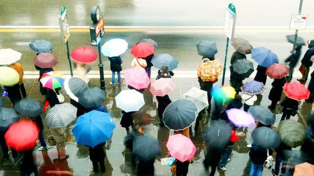 Menschen mit bunten Regenschirmen warten an einer Bushaltestelle.