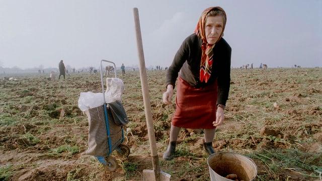 Frau auf einem Acker nahe Moskau.