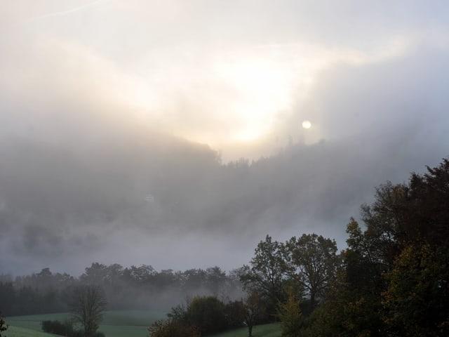 Hügellandschaft mit Bäumen und Wäldern. Alles in Nebelschwaden gehüllt. Die Sonne ist nur als Scheibe zu erahnen.