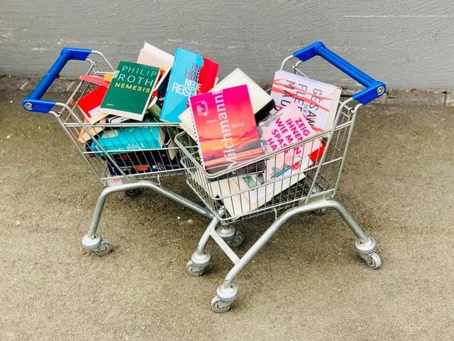 Zwei Einkaufswagen voll mit Büchern