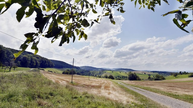 Kulturland bei Magden im Kanton Aargau