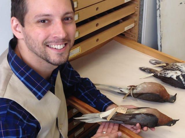 Ein Mann hält eine ausgestopften Taube in der Hand