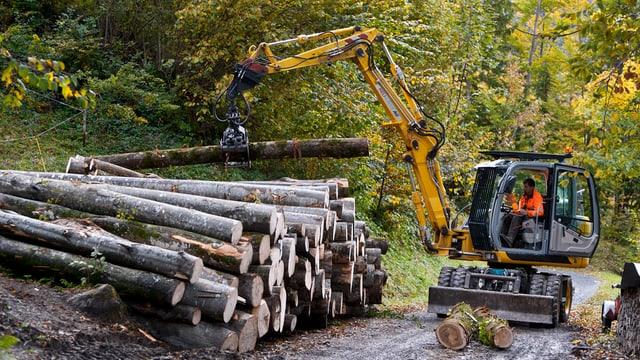 Forstwirtschaft, Bagger türmt Baumstämme aufeinander.