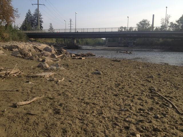 Sandiges Ufer an der Emme.