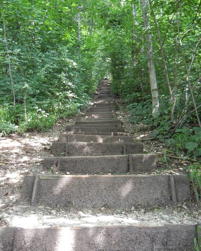 Blick über die vielen Stufen des Weges.