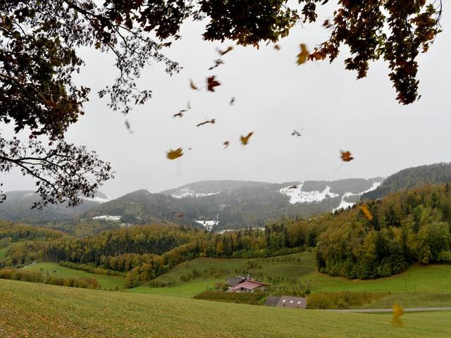 Die Berge des Juras sind teils mit Schnee bedeckt, darunter buntes Laub auf den Bäumen im Baselbiet.