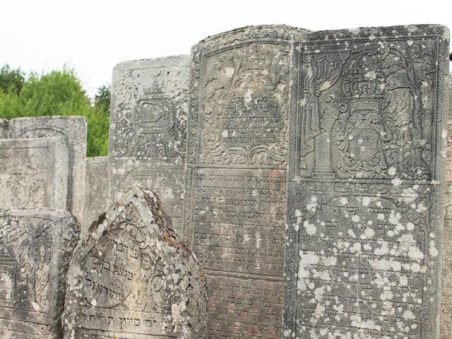 Grabsteine des jüdischen Friedhofs in Brody.