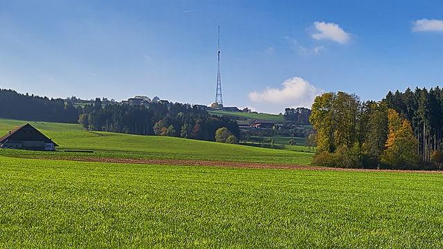 Blick auf den Landessender bei Beromünster.