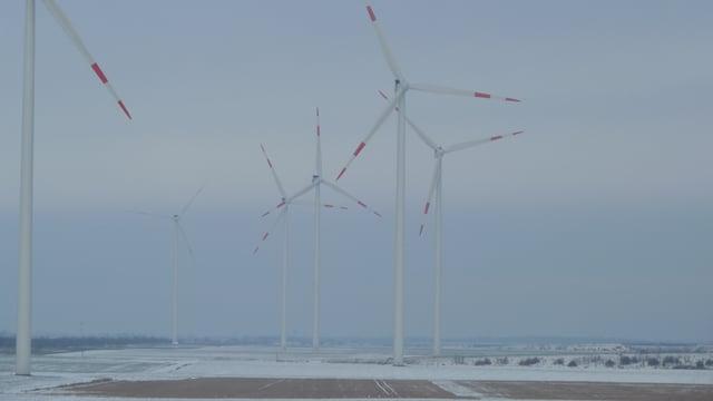 Windturbinen in Halle in Winterlandschaft