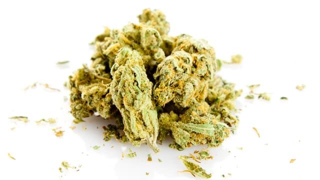 Zu sehen ist die getrocknete Blüte, Marijuana.
