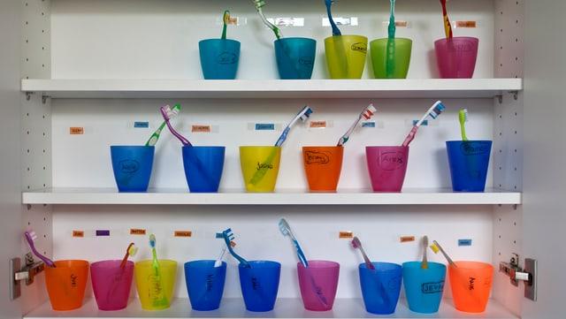 Mehrere verschieden farbige Plastikbecher mit Zahnbürsten darin in einem Badzimmer-Schrank