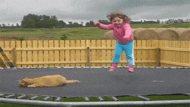 "Laschar ir video «E hop! Siglir sin il ""trampolin"".»"