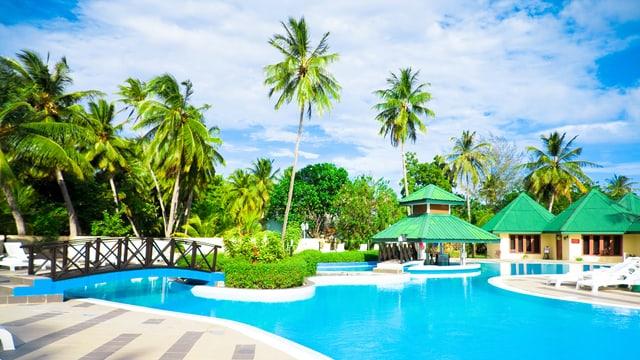 Palmen, Pool und blauer Himmel