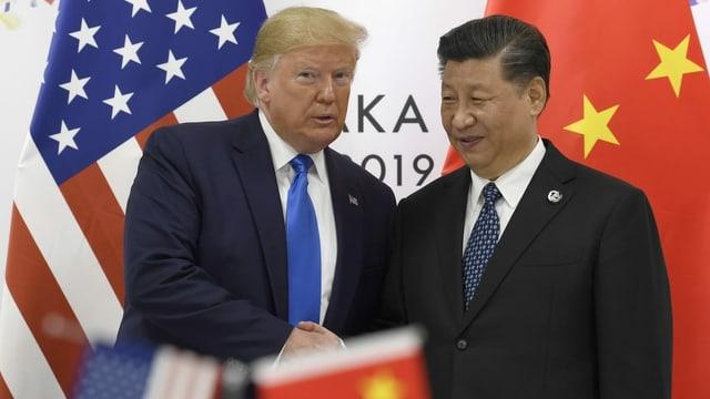 US-Präsident Donald Trump und Chinas Staatschef Xi Jinping schütteln sich die Hände.