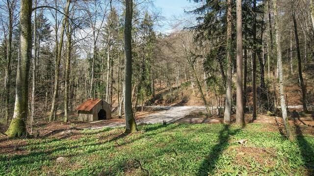 Eine Holzhütte in einem Wald