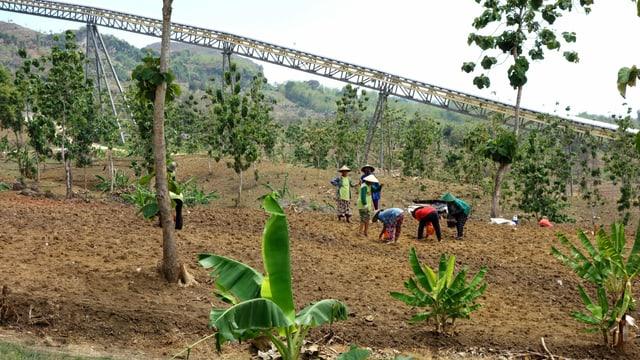 Bauern unter einer Eisen-Trasse.