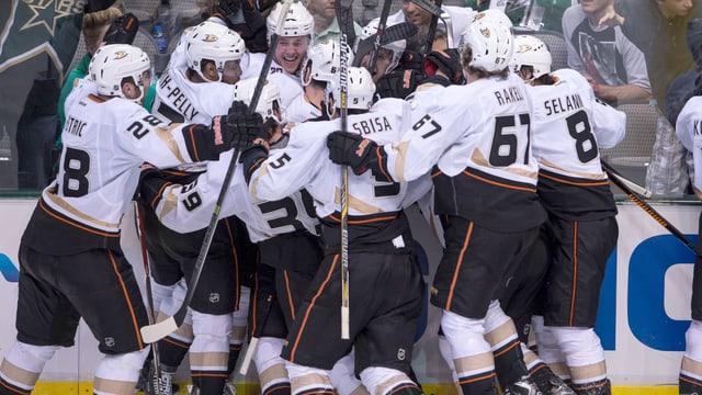 Die Ducks haben gegen die Dallas Stars den Viertelfinal-Einzug geschafft.