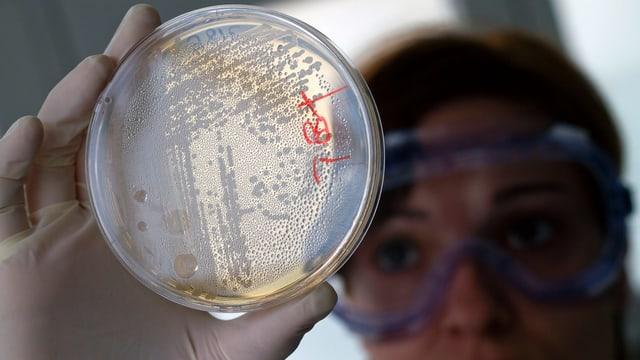 Antibiotika sind zu wenig lukrativ