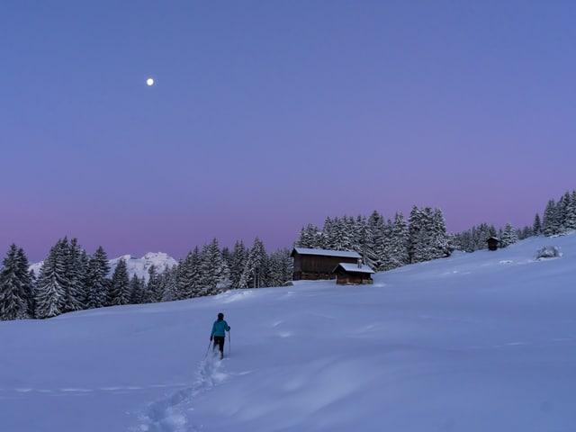 Schneeschuhläufer im Tiefschnee bei Morgendämmerung