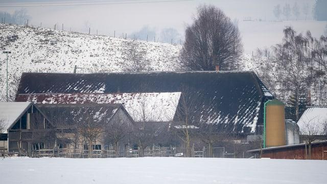 Blick auf eine dunkle Scheune mit einem Silo daneben in verschneiter Landschaft.