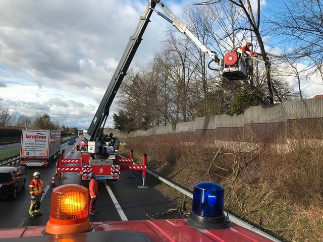 Die Feuerwehr schneidet einen Baum an der A4a zurück.