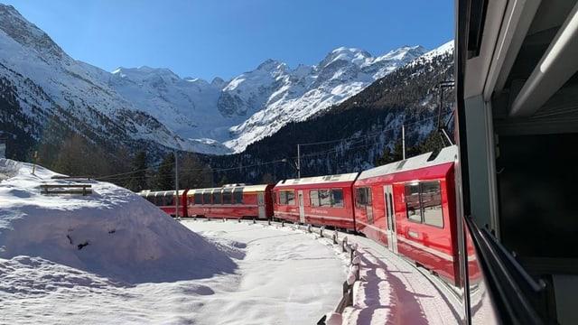 Berninabahn in der Montebello-Kurve vor dem wolkenlosen Bernina-Massiv.