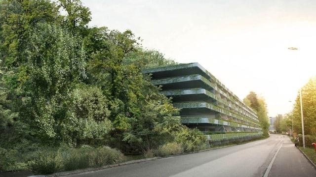 Im Wald drin ist das mehrstöckige Parkhaus zu sehen, leicht überwachsen mit grünen Pflanzen.