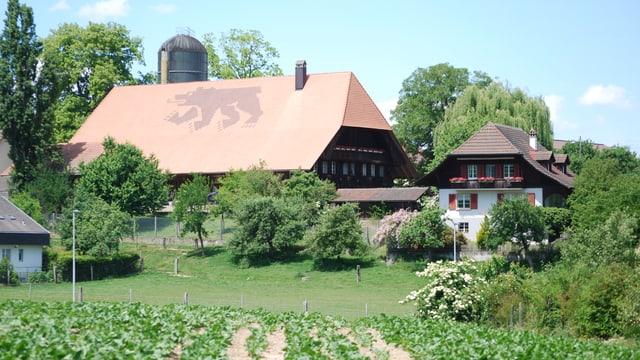 Bauernhof-Gruppe im Kanton Bern