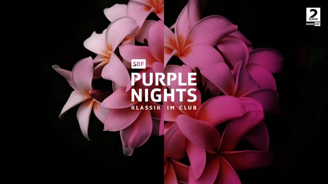 SRF Purple Nights