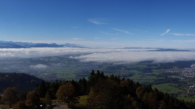 Blick auf eine Nebelfeld.