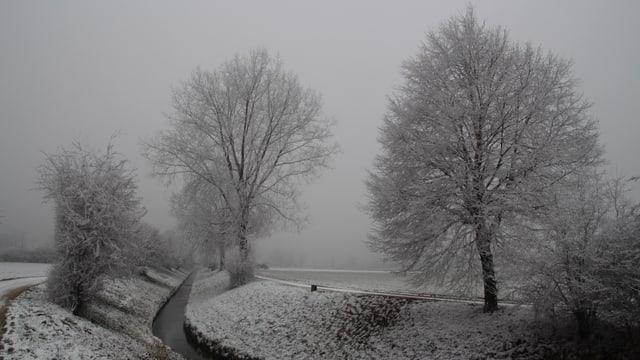 Angezuckerte Landschaft in Aetingen.