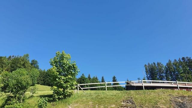 Stahlblauer Himmel in der Ostschweiz.