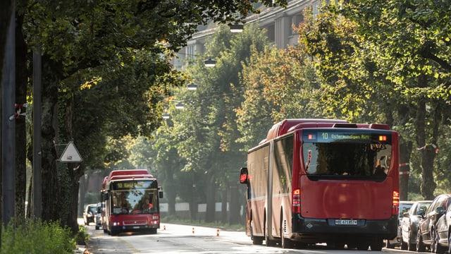 Zwei Busse der Linie 10.