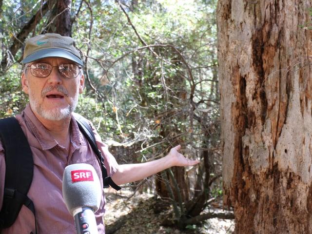 Ein Mann mit Hut und Brille zeigt auf einen abgestorbenen Baum.