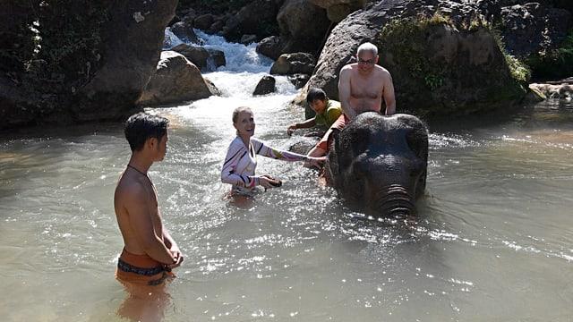 Touristen baden mit einem Elefanten.