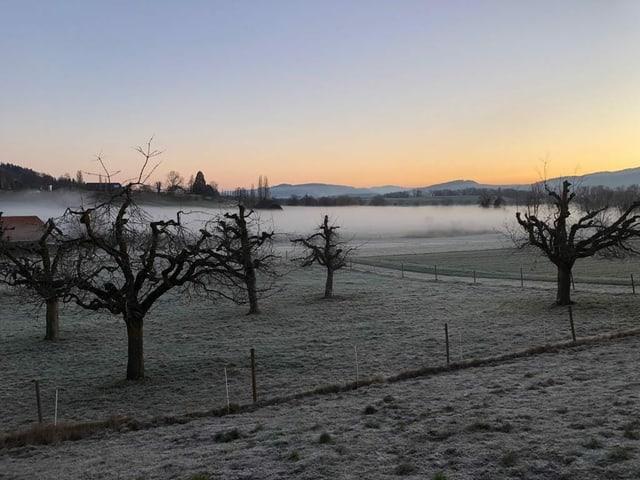In einer Mulde bei Gerzensee liegt stockdichter Bodennebel, sonst ist es wolkenlos.