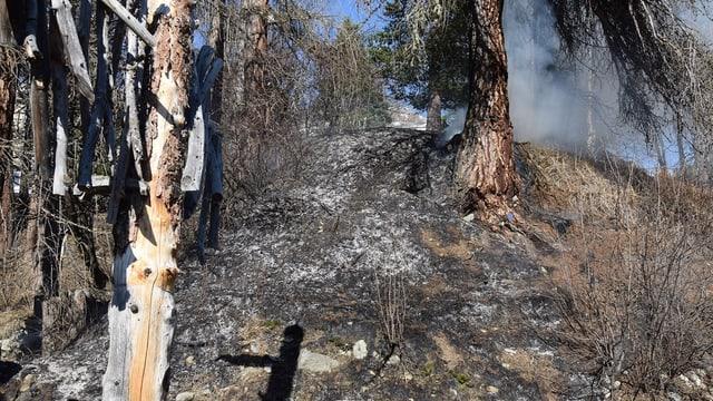 L'incendi ha destruì cultira a Puntraschigna.