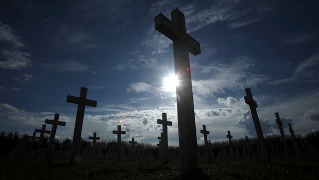 Kreuze zur Erinnerung an Kriegsopfer stehen auf einem Feld.