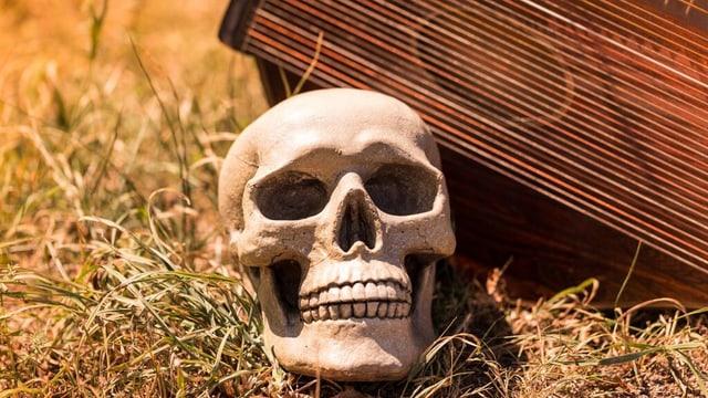 Totenkopf im Gras vor einer Leier.
